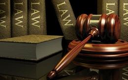 Chính thức công bố 8 luật mới