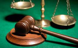 Những văn bản pháp luật nổi bật tuần từ 17-23/11/2014