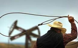 Giá dầu giảm - Tương lai của ngành dầu khí Mỹ ra sao?