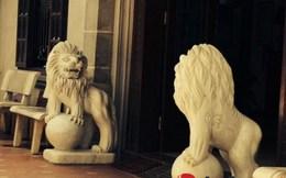 Đại gia Kinh Bắc không tiếc tiền 'trấn yểm' nhà bằng linh vật lạ