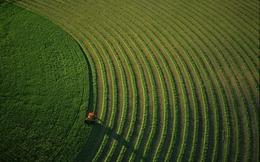 12 cách người Israel thay đổi nền nông nghiệp thế giới (P1)