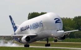 Cận cảnh siêu máy bay vận tải 'khủng' nhất của Airbus