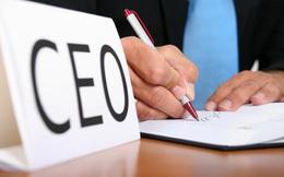 9 điều bất kỳ CEO thông minh nào cũng thực hiện