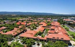 Những điểm khác biệt giữa Harvard và Stanford