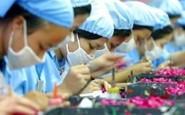 Khối FDI chiếm tới 62% tổng kim ngạch xuất nhập khẩu của cả nước