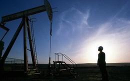 'Thế giới đón đợi thảm họa chính trị khi giá dầu xuống quá thấp'