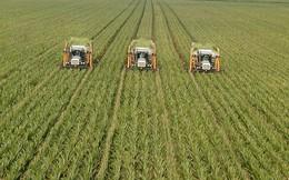 12 cách người Israel thay đổi nền nông nghiệp thế giới (P2)
