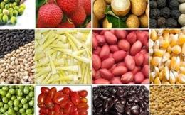 Giá trị xuất khẩu nông sản 2014 lập đỉnh mới