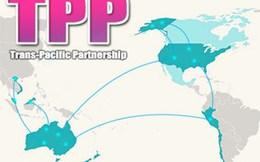TPP: Bức tranh màu hồng cho Việt Nam