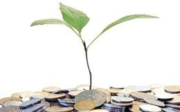 Nhà nước khởi nguồn cho đầu tư mạo hiểm