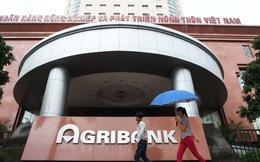 Vì sao nguyên chủ tịch Agribank bị bắt?