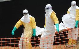 7 'chiêu' kiếm lời từ dịch bệnh Ebola
