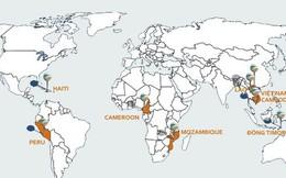 Viettel: Khai phá lục địa Mỹ - Phi, hái quả ngọt nghìn tỷ từ Đông Nam Á