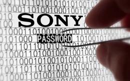 Hacker phát tán 5 bộ phim của Sony Pictures