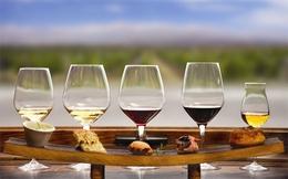 [Infographic] Thưởng thức vang: Rượu nào thức đó