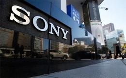 Sony báo lãi sau thời gian dài liên tiếp thua lỗ
