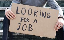 Nghề nào dễ tìm việc nhất tại Việt Nam năm 2015?