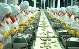 HSBC: Việt Nam không thể mãi trông vào lao động giá rẻ