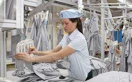 Phó Thủ tướng Vũ Đức Đam: Ba yếu tố tăng năng suất lao động