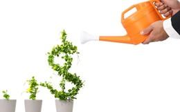 10 mẹo tiết kiệm tiền của người giàu