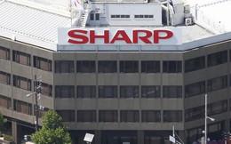 Tượng đài Sharp của Nhật Bản đang thoi thóp chờ chết?