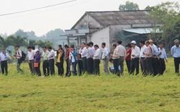 """Áp dụng """"3 giảm 3 tăng"""", nông dân lãi 19 triệu đồng/ha"""
