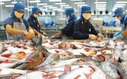 """Mỹ thất hứa, cá da trơn Việt Nam bị """"phục kích thương mại"""""""