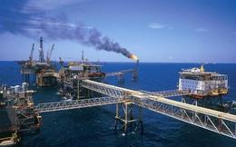 Giá dầu lao dốc khiến giá trị xuất khẩu dầu thô Việt Nam 'bốc hơi' 1 nửa