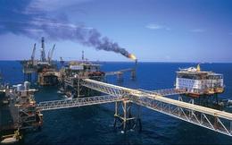 Giá dầu thô giảm 50 USD, doanh thu PVN hụt 163.400 tỷ đồng