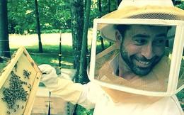 Doanh nghiệp giải cứu ong Mỹ