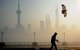 """Trung Quốc có bao nhiêu """"siêu thành phố""""?"""