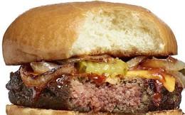 """Với Alphabet, Larry Page sẽ cho cả thế giới """"ăn thịt làm từ rau"""" ?"""