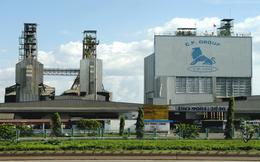 Chân dung C.P Group: Đại gia Thái xâm chiếm thị trường nông nghiệp Việt Nam