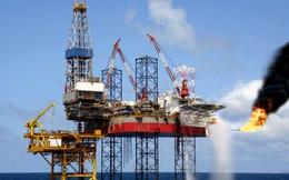 ANZ: Tiêu thụ dầu của Việt Nam đang tăng nhanh nhất khu vực, vượt cả Trung Quốc
