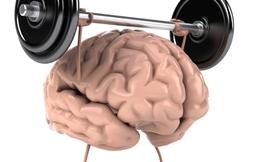 5 thói quen hàng ngày giúp tăng cường hoạt động não bộ