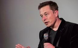 Elon Musk khuyên CEO Twitter không nên quản lý 2 công ty cùng lúc