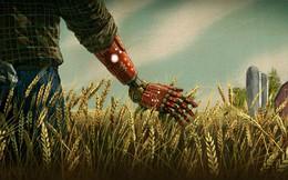 Khởi nghiệp nông nghiệp không cần đất: Họ đã làm điều đó như thế nào?