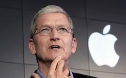 Nghi vấn công ty đứng sau Apple Việt Nam lập ra để trốn thuế