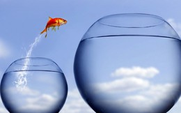 8 kỳ vọng kinh tế vĩ mô của nhà đầu tư năm 2015