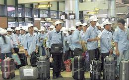 Hàng nghìn lao động Việt Nam tại UAE bị chấm dứt hợp đồng