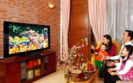 Khó quản lý giá sàn dịch vụ truyền hình trả tiền