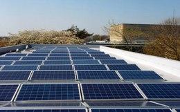 Phó Thủ tướng chỉ đạo xây dựng cơ chế hỗ trợ phát triển điện mặt trời