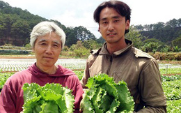 Nông dân làm giàu nhờ liên kết xuất khẩu nông sản