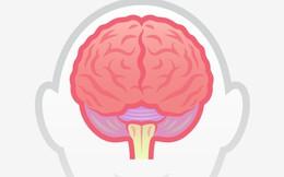 7 dấu hiệu này cho thấy bạn thông minh hơn người thường