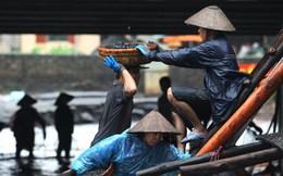 Vỡ đập ở Quảng Ninh, 31.000 quân sẵn sàng ứng phó
