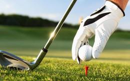 Ngành phân bón Việt Nam bị đe dọa bởi… sân golf?