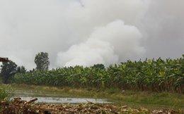 Cháy hàng trăm hecta rừng tràm ở U Minh Thượng