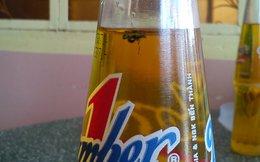 Người dân lại phản ánh trong chai Number One có ruồi