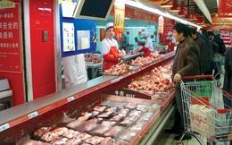 Ăn thịt là gián tiếp làm hại Trái đất?