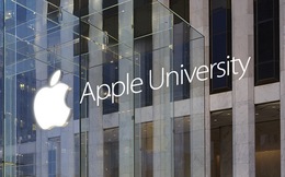 Giảng viên đại học Apple nhận lương 1,7 triệu USD/năm
